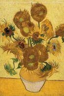 Rondleiding van Gogh Museum Amsterdam met gids